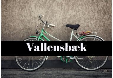 cykelreparatør Vallensbæk