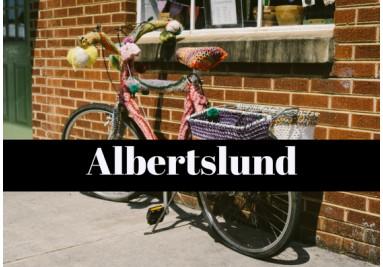 cykelreparatør Albertslund